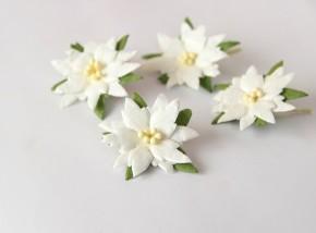 Пуансетии 4 см средние белые