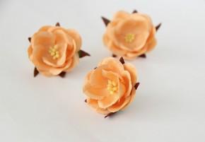Дикие розы Персиковые, диаметр 4,5 см, 1 шт.