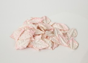 Листья без стебельков Розовоперсиковые светлые 10 шт.
