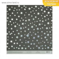 Бумага для скрапбукинга с серебряным тисненим «Звёзды», 20 × 21.5 см, 250 г/м