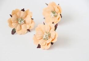 Пионы Персиковые 5-6 см, 1 шт.