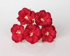 Вьюнки красные, диаметр 4 см, 5 шт