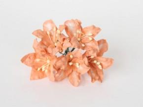 Лилии оранжевые 1 шт.