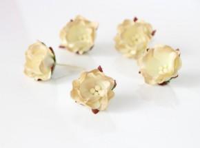 Цветок яблони Светло-бежевый 2-хтоновый 1 шт.