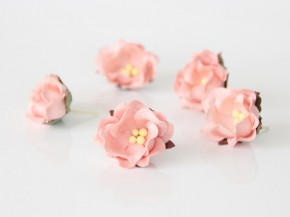 Цветок яблони Розово-персиковый светлый 1 шт.