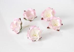 Цветок яблони Светло-розовый + белый 1 шт.