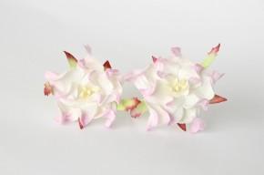 Гардении светло-розовый+белый, 4-5 см