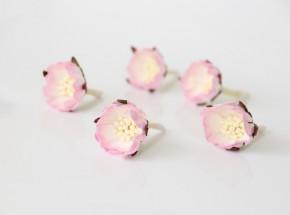 Шиповник Светло-розовый + белый, 1 шт
