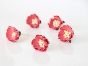 Шиповник Розово-персиковый, темный №2. 1 шт