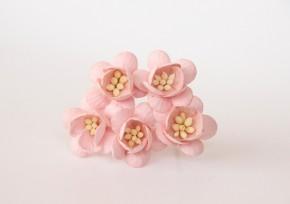 Цветок вишни Розово-персиковый, 1 шт