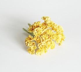 Гипсофилы желтые, 1 шт.