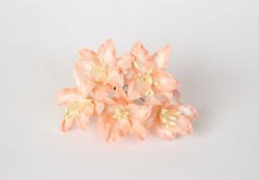 Лилии светло-оранжевые, 1 шт.